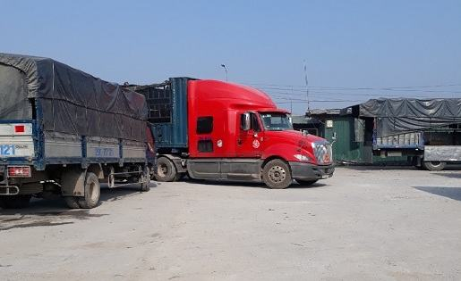 Xe-tải-và-đầu-kéo-chuyển-hàng-vttl